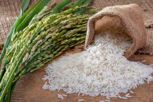 dieta di riso crudo per dimagrire