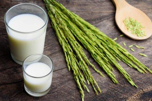 come fare il latte di cocco per perdere peso