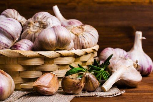 curare la prostatite con l aglio la