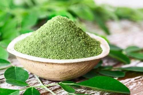 i semi di moringa vengono usati per perdere peso