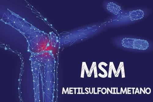 aumento di peso del supplemento di msm