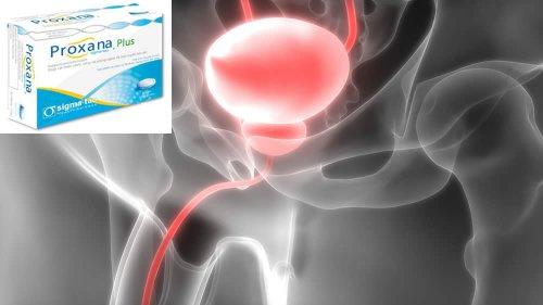 urogermin prostata prezzi