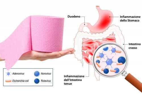gastroenterite nella dieta in gravidanza